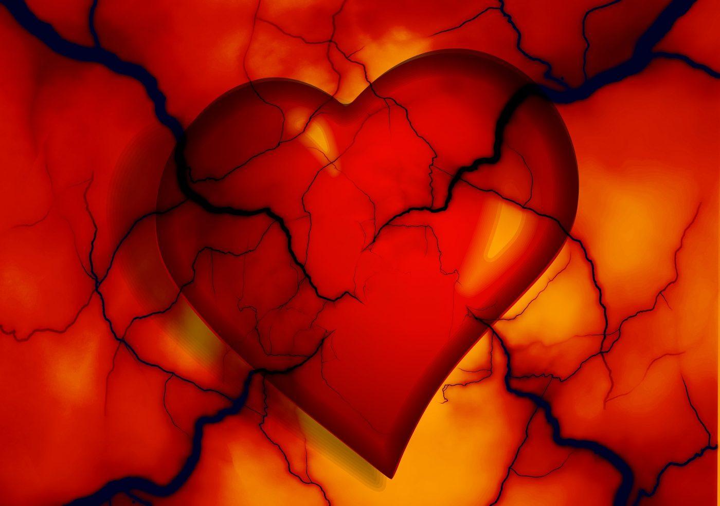eleutherococcus ekstrakt hipertenzija prevencija hipertenzije foto