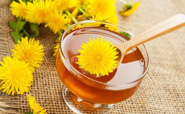 maslačak cvijeće od hipertenzije