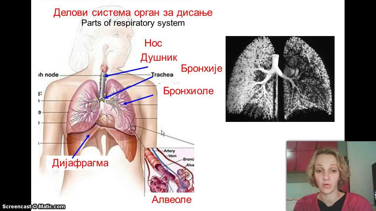respiratorni tehnika disanja za hipertenziju
