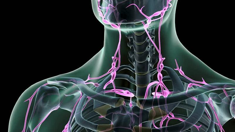 Širdies ritmui sutrikus – pas medikus per pirmas dvi paras