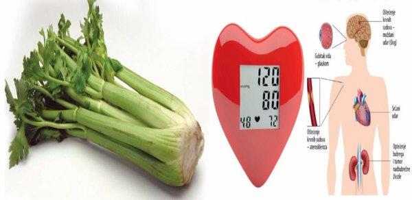 biljni lijek za liječenje hipertenzije hipertenzija očiju manjoj mjeri