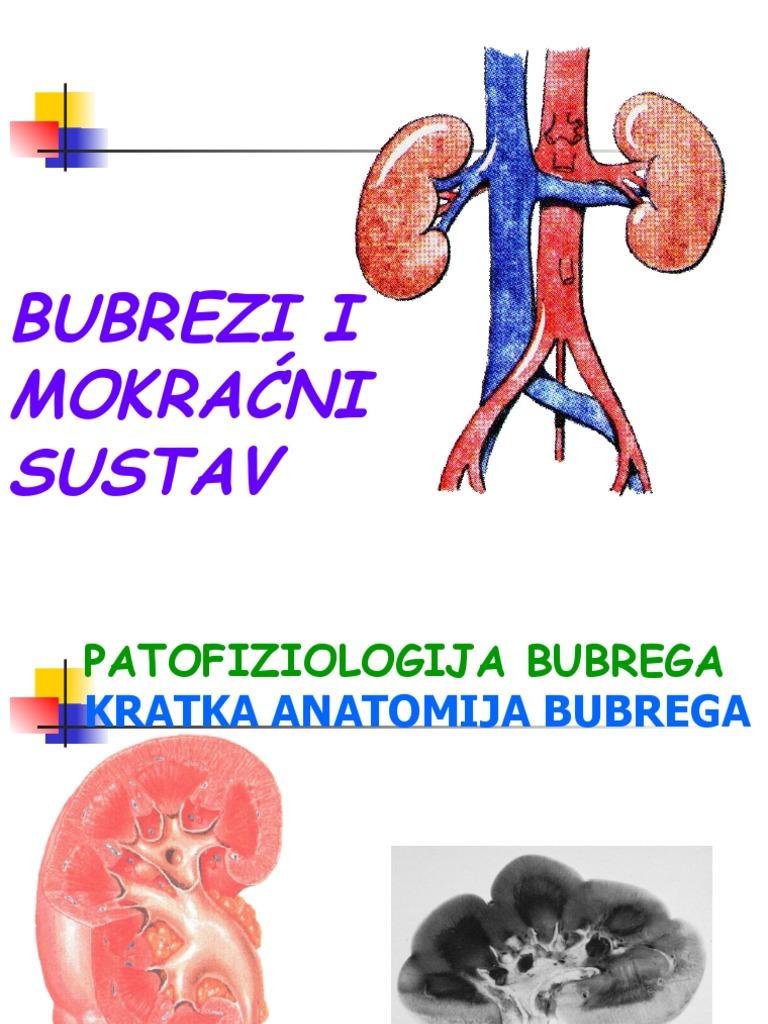 hipertenzija i nakapnice hipertenzija jednostavno kompleksa