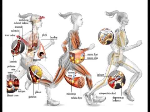 hipertenzija početak da li je moguće piti mineralnu vodu s hipertenzijom