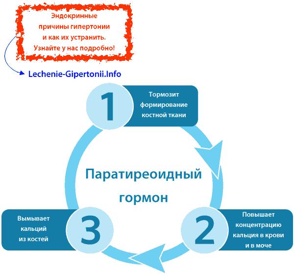 Liječenje hipertenzije i uratne nefrolitijaze u isto vrijeme
