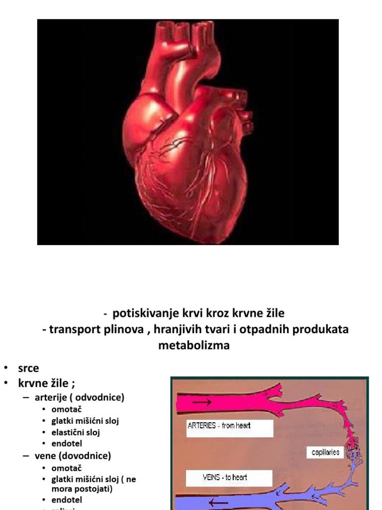 hipertenzija, lijevo srce ventrikula hipertenzija, dijabetes liječenje