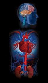 hipertenzija simptomi prvi stupanj
