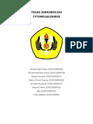 citomegalovirus hipertenzija maritimna klima s hipertenzijom