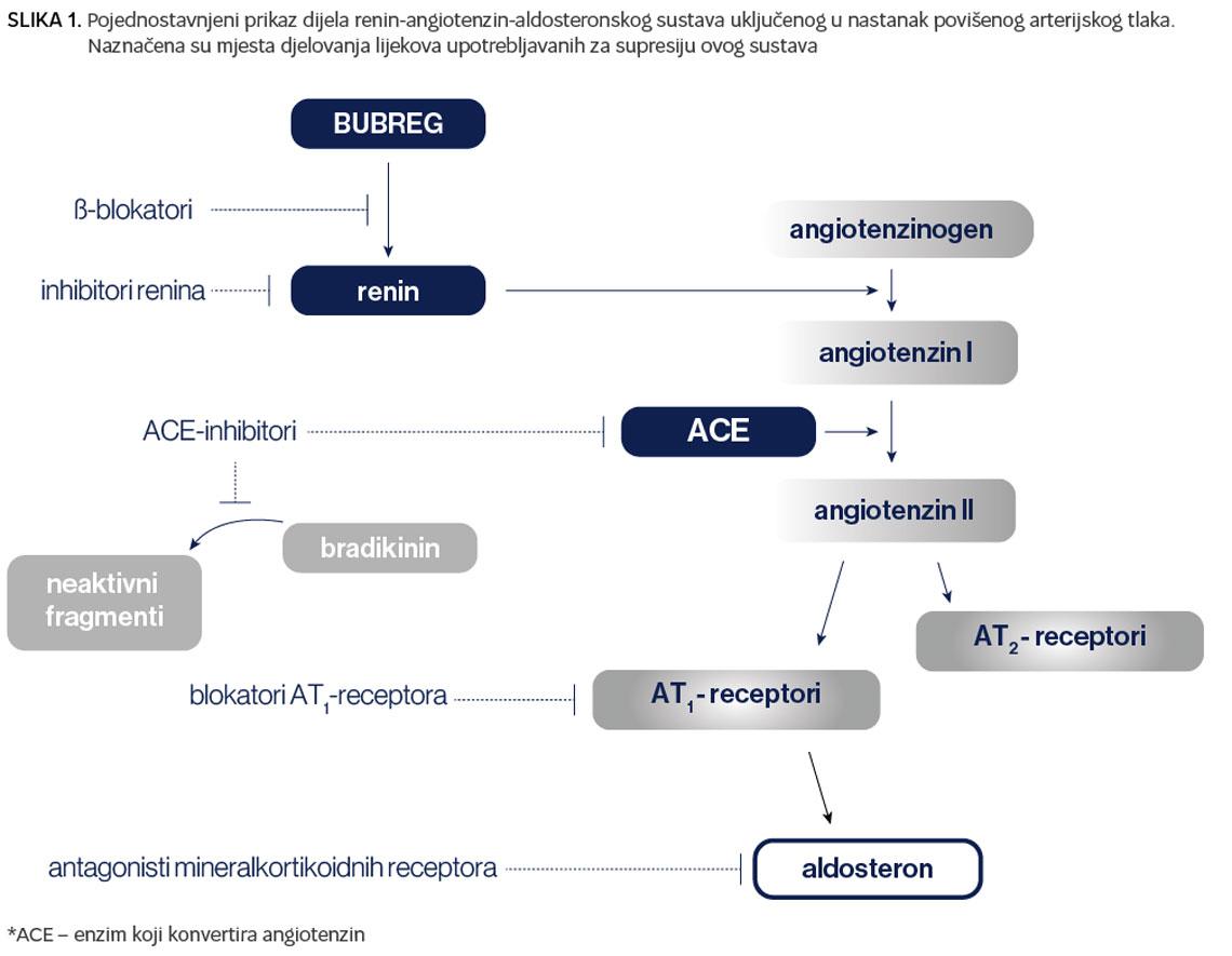 hipertenzija fazi ili stupnja 2