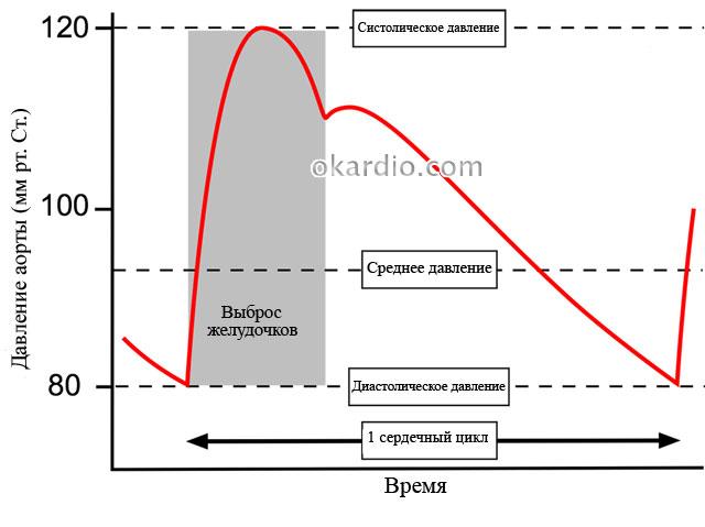 difuzni hipertenzija
