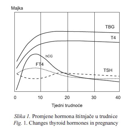 hormona u hipertenzije