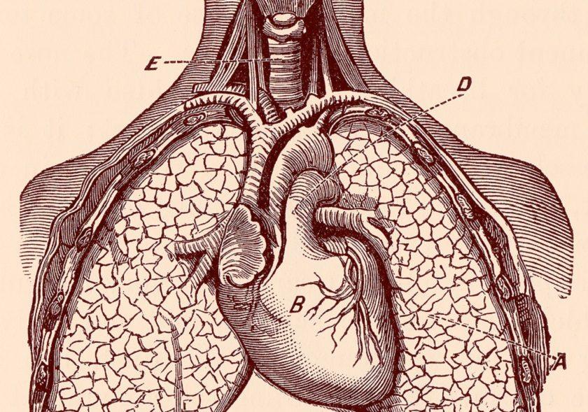 nije bolan srce dovoljno zraka