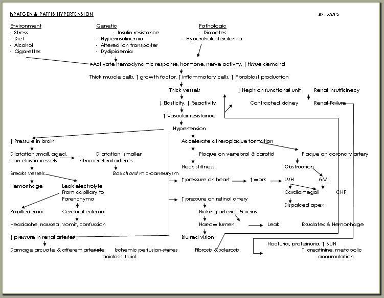 terapijski glazbe od hipertenzije knjiga liječenje hipertenzije bez droge