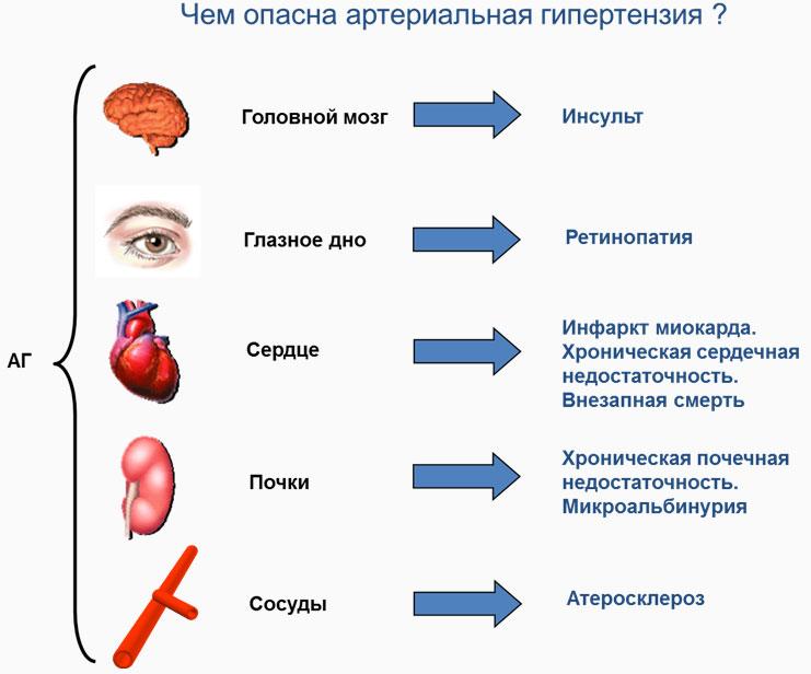 grašak i hipertenzija hipertenzija 2 invalidnost