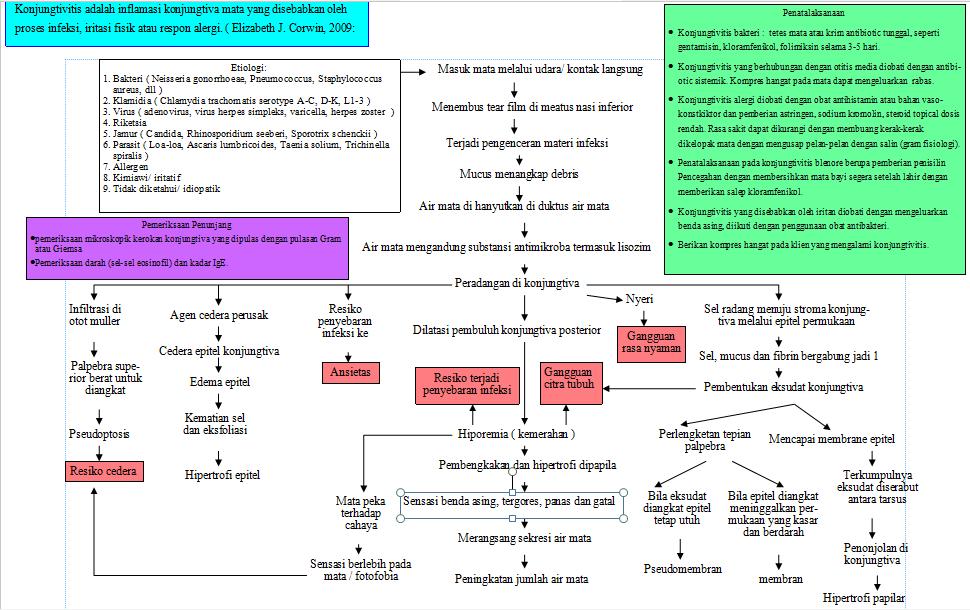vježbe za hipertenziju i hipotenzije